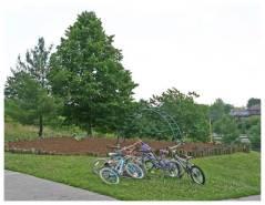 linden green bikes